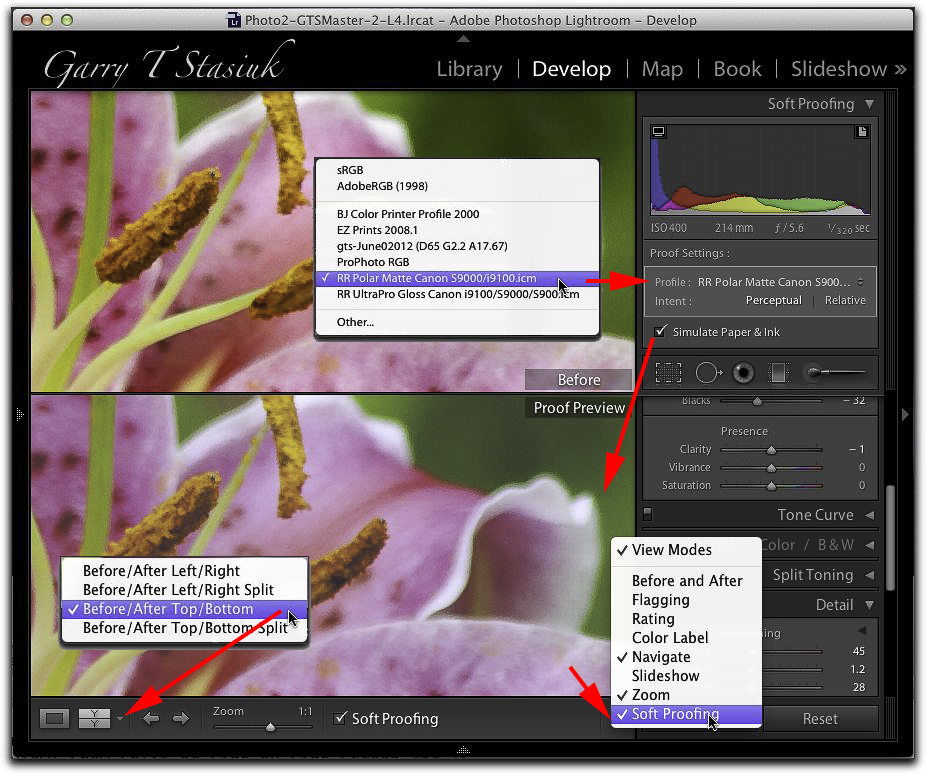Softproofing in Lightroom